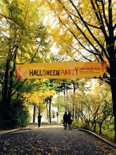 建国大学キャンパス。すっかり秋色です。