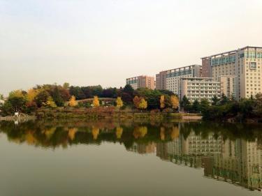 季節ごとにキャンパス内の雰囲気が異なります。