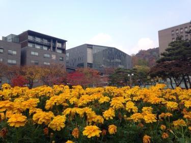 숭실대학교(崇実大学)のキャンパス。