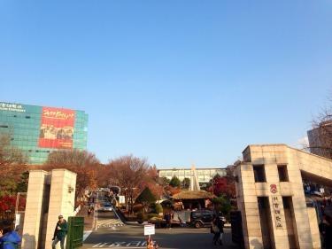冬支度の雰囲気ある西江大学