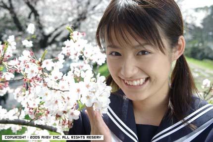 桜 近野成美