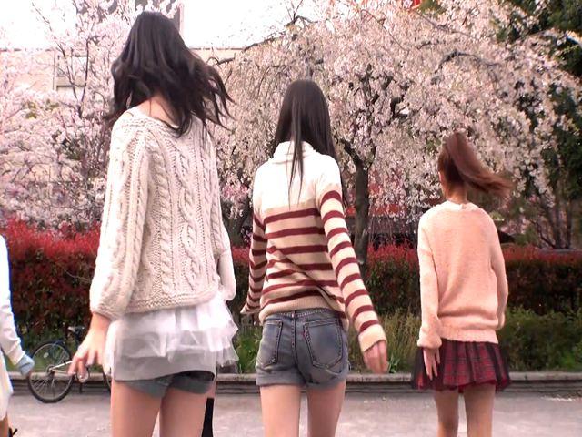 桜 キュート