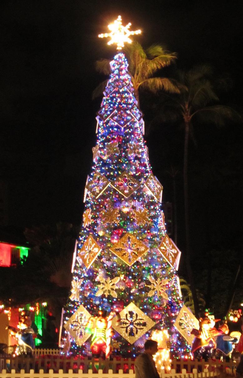 2010-12ハワイ②