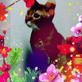 2012-12-20_231805.jpg