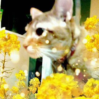 2012-12-20_232852.jpg