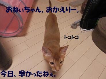 P8140531.jpg