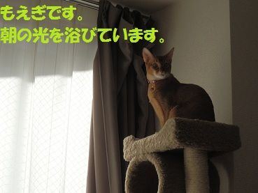 PC022475.jpg