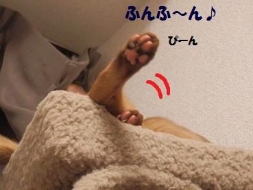 PC112721.jpg