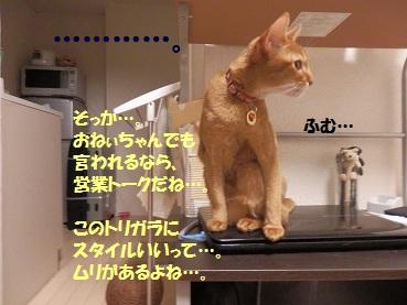 PC122751.jpg