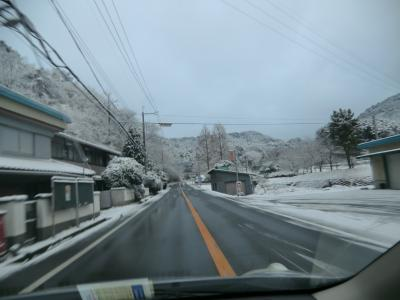 2012-1-24雪景色②