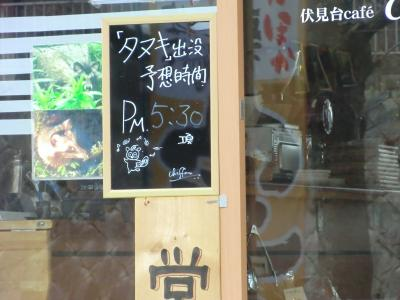 タヌキが訪れる喫茶店