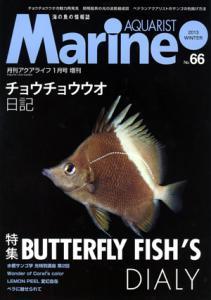 MA66-web.jpg