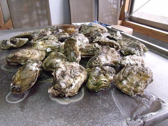気仙沼 唐桑番屋 牡蠣
