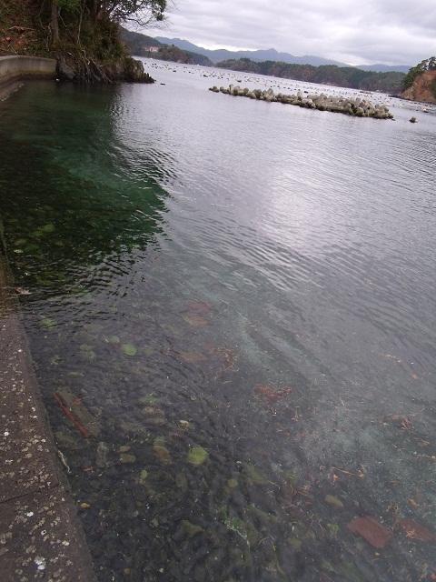 気仙沼 唐桑番屋 景色 (2)