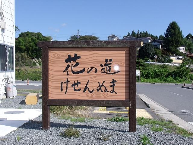 気仙沼 花の道直売所