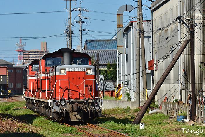 DSC_9734.jpg