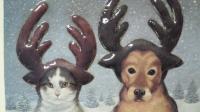 トナカイにあこがれた猫と犬