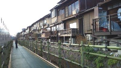 竹の遊歩道