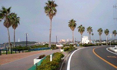 Audax Japan Chiba-南房総