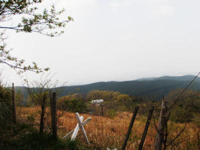 Audax Japan Chiba-山ほたる