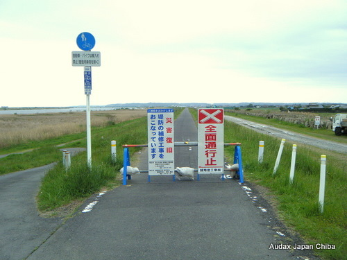 $Audax Japan Chiba