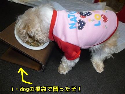2012-12-23ぽっぽ008