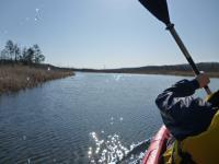 Moss湖へ