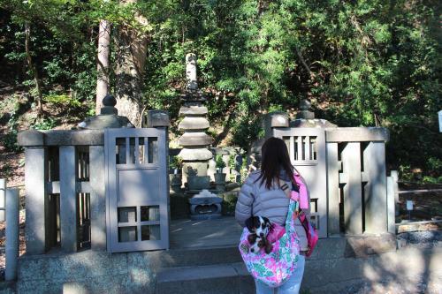 頼朝の墓3