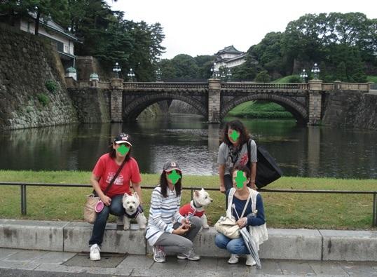 20118-21-19.jpg