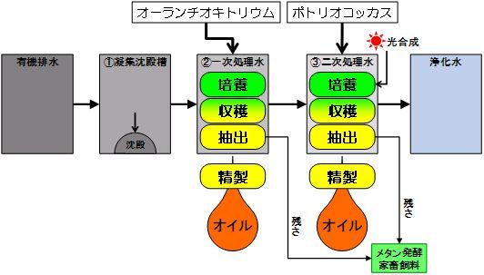 k70_2.jpg
