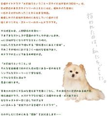 さっち~のブログ