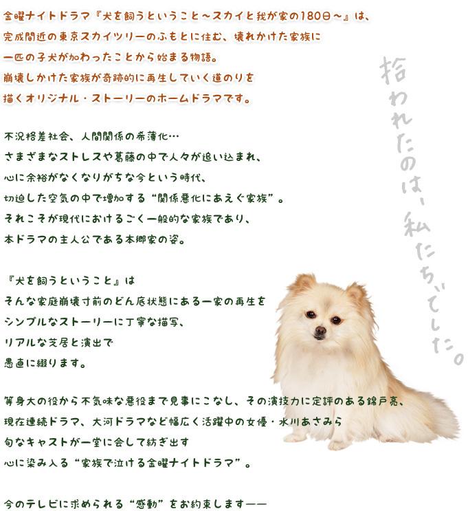 犬 を 飼う という こと ドラマ