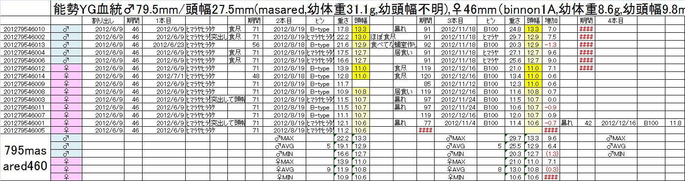 飼育管理表 2012-13 795masaredx460 3本目