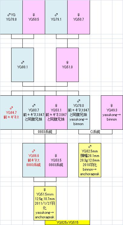 825515系統図