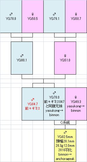825系統図