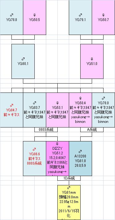 810系統図