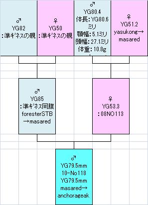 795系統図