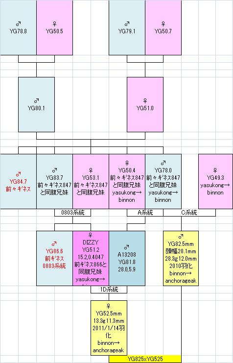 825525系統図