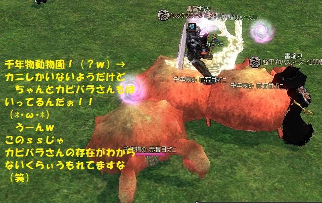 mabinogi_2012_02_25_017.jpg