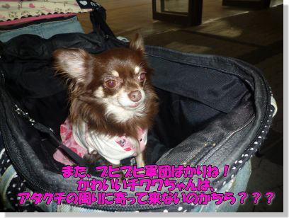 image7_20110927003855.jpg