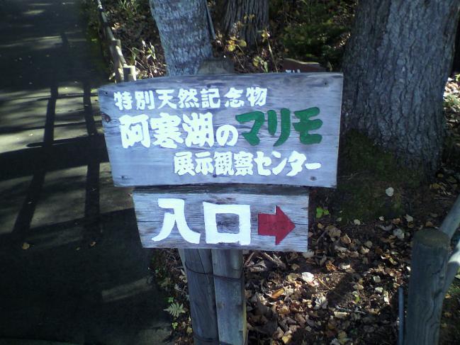 2011102012220001.jpg