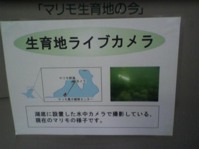 2011102012250002.jpg