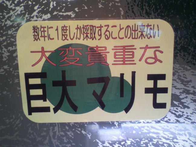 2011102012260001.jpg
