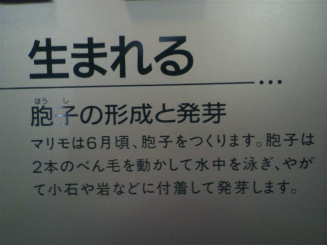 2011102012270001.jpg