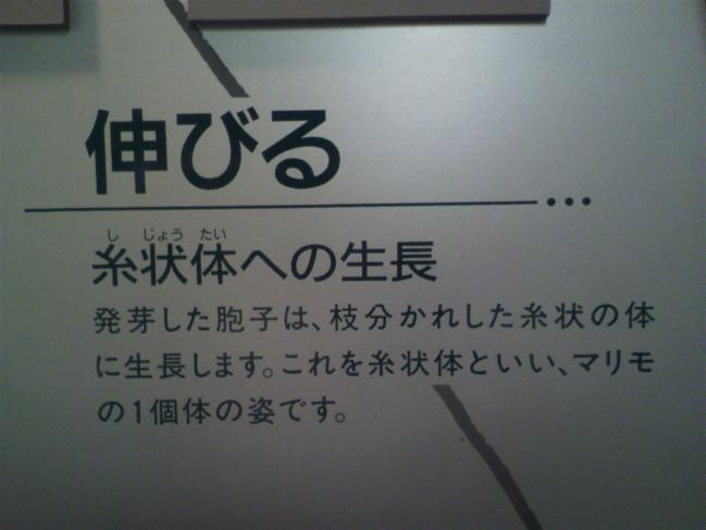 2011102012270003.jpg