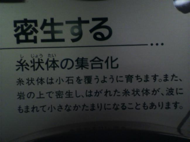 2011102012280000.jpg