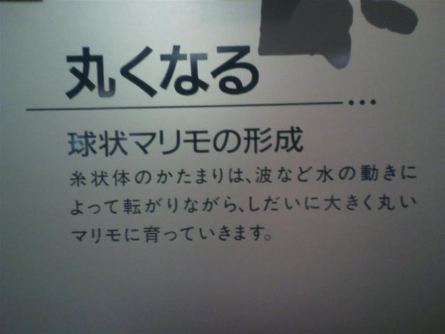 2011102012280002.jpg