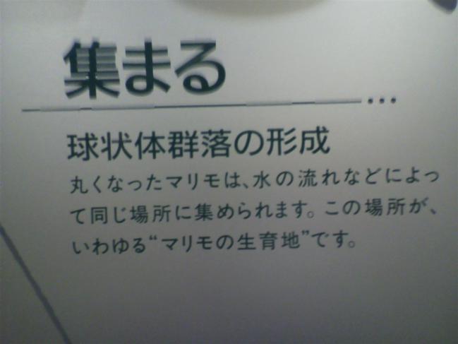 2011102012280004.jpg