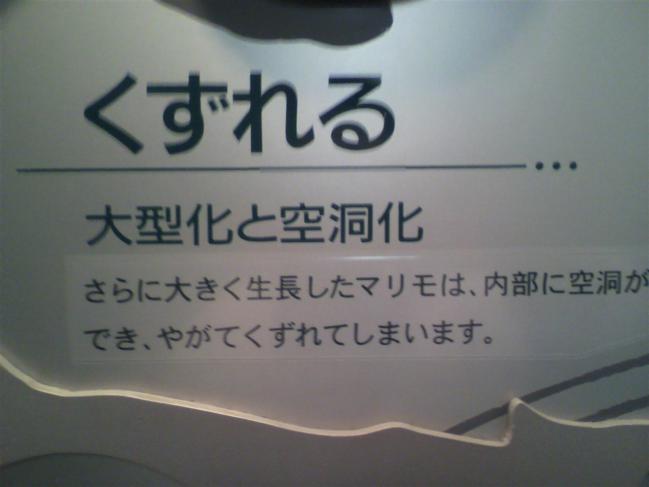 2011102012290000.jpg