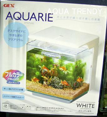 gex aquarie